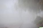 mgła08.jpg