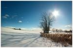 Zimowe Popówko