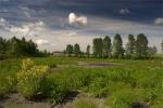 Było sobie jeziorko w Milewku... łza się w oku kręci :) Szok.