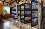 Wystawa Fotonowiaków  w  Avanti -  2016