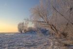 """Zima nad """"naszą"""" Wisłą"""