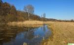 rozlewiska na nadwiślańskich łąkach